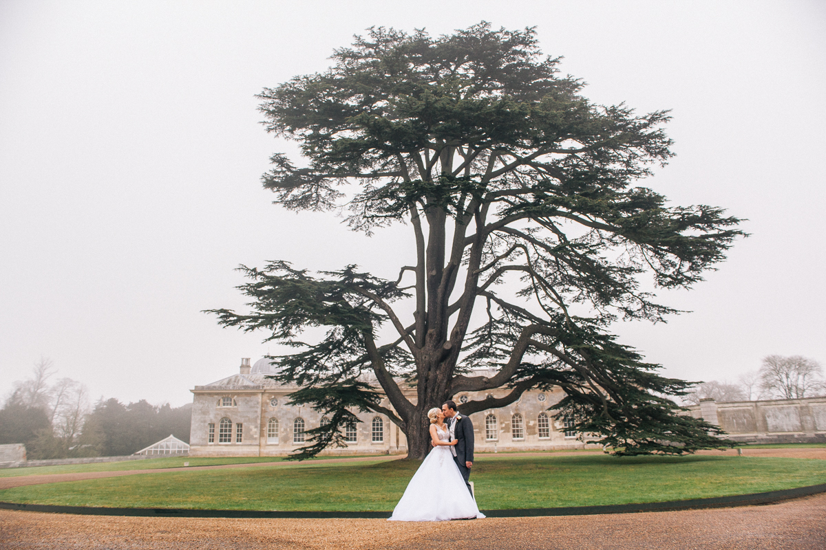 bride and groom portrait by big tree